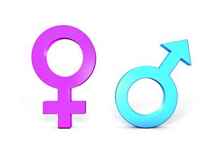 Männlich weiblich